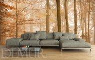 Fototapeta las w kolorze sepii