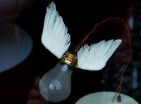 Lampy mało popularne